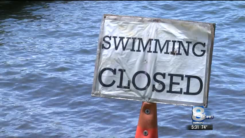 Livingston County officials warn of blue-green algae bloom_81883468-159532