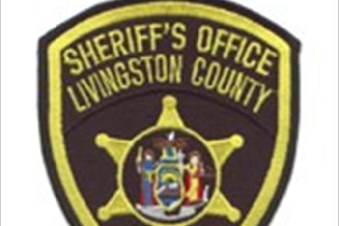 Livingston County Sheriff's Office_8511036175765753826