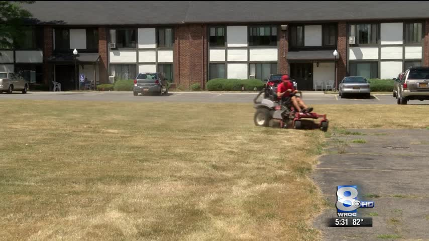 Summer drought taking toll on lawn care companies_18695465-159532