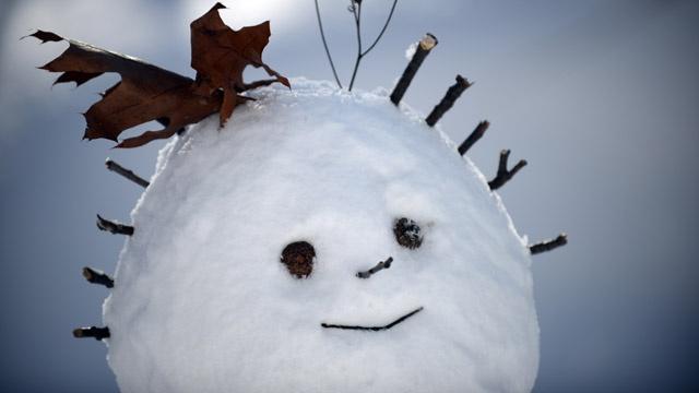 snowman_3804242414335898-159532