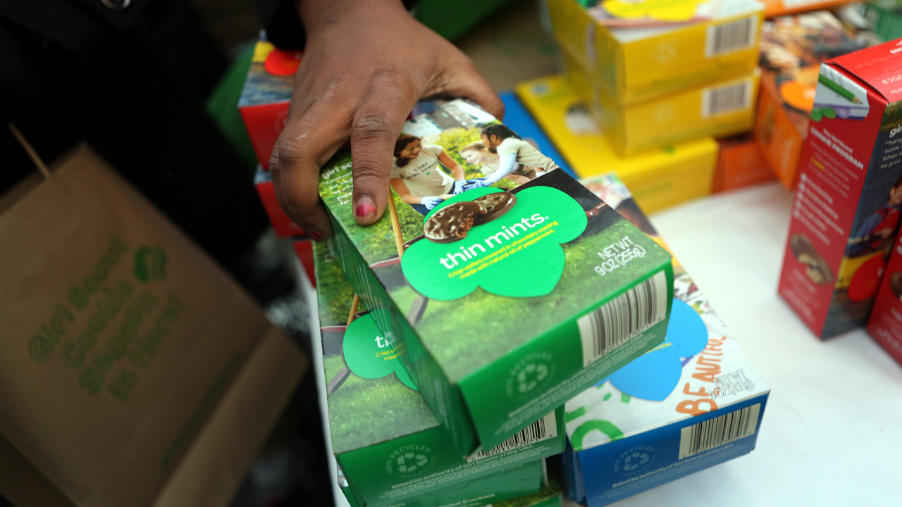 Girl Scout Cookies Thin Mints-159532.jpg99621186