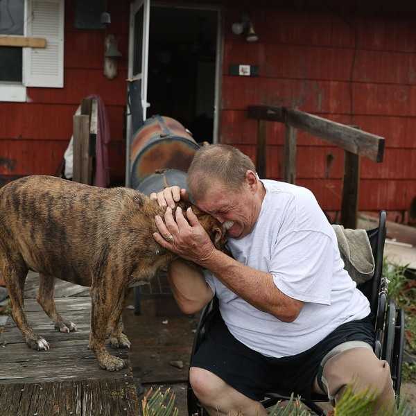 Dog, man crying in Rockport, Hurricane Harvey31096473-159532