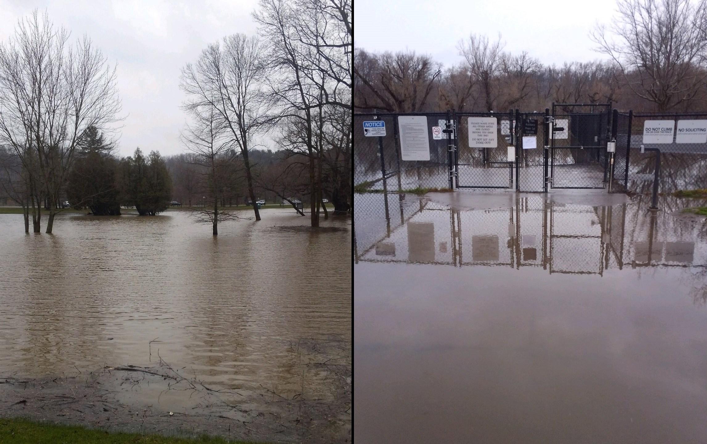 ellison-flooded1_1523971254115.jpg