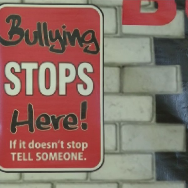 Anti-bullying event in Rochester