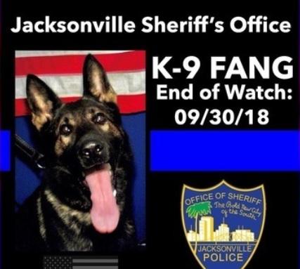 Police K9_1538476759174.jpg.jpg