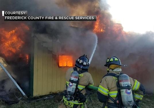 Eight horses killed in barn fire in Maryland_1549891390251.jpg.jpg