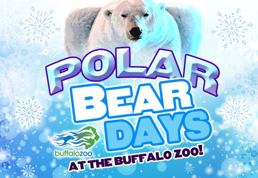 Polar-Bear-Days1_1549670734062.jpg