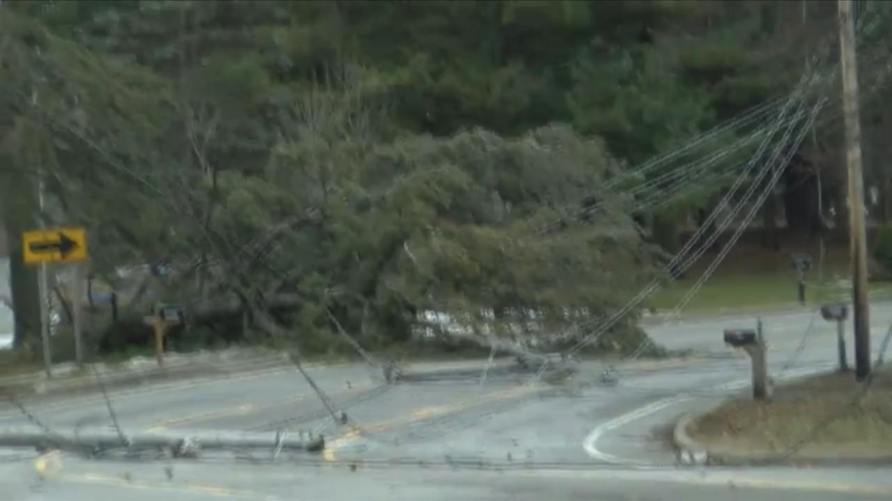 Wind_knocks_down_tree__wires_on_Chili_Av_0_20190224204436
