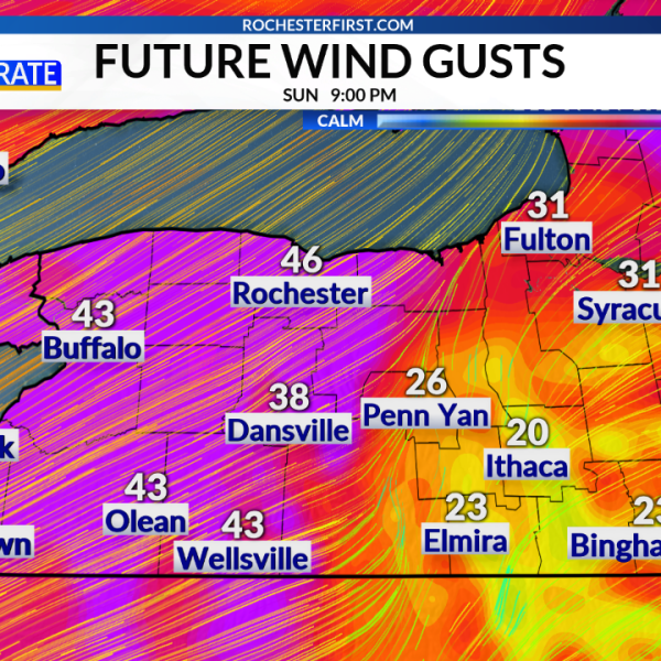Western NY_RPM_Forecast Wind Gust Particles_1552173383210.png.jpg