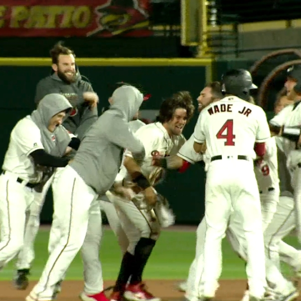 Wings Top Bisons in Walk-off Fashion