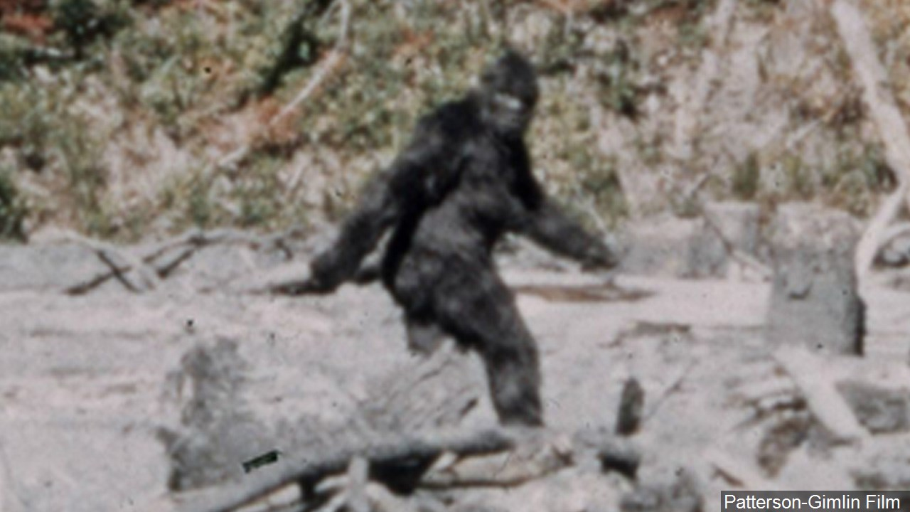Survey: New York ranks fifth in bigfoot sightings