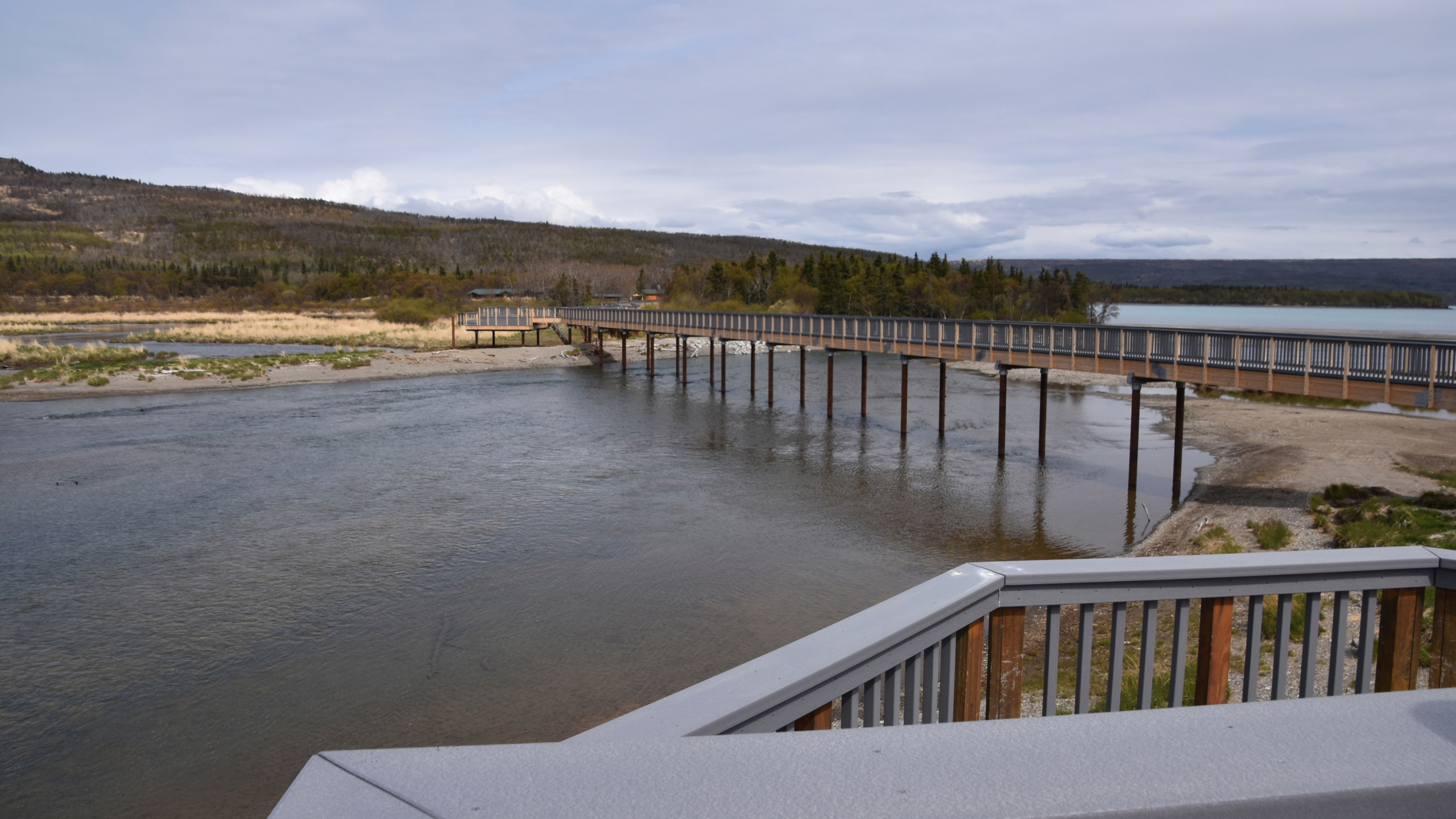 Bear_Bridge-Katmai_32142-159532.jpg44568133