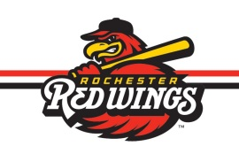 Red Wings logo_1557065199348.jpg.jpg