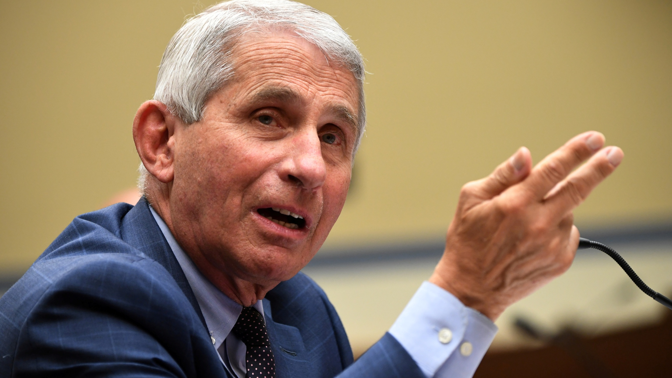 Dr. Fauci says Moderna boosters might not be ready by September 20    RochesterFirst