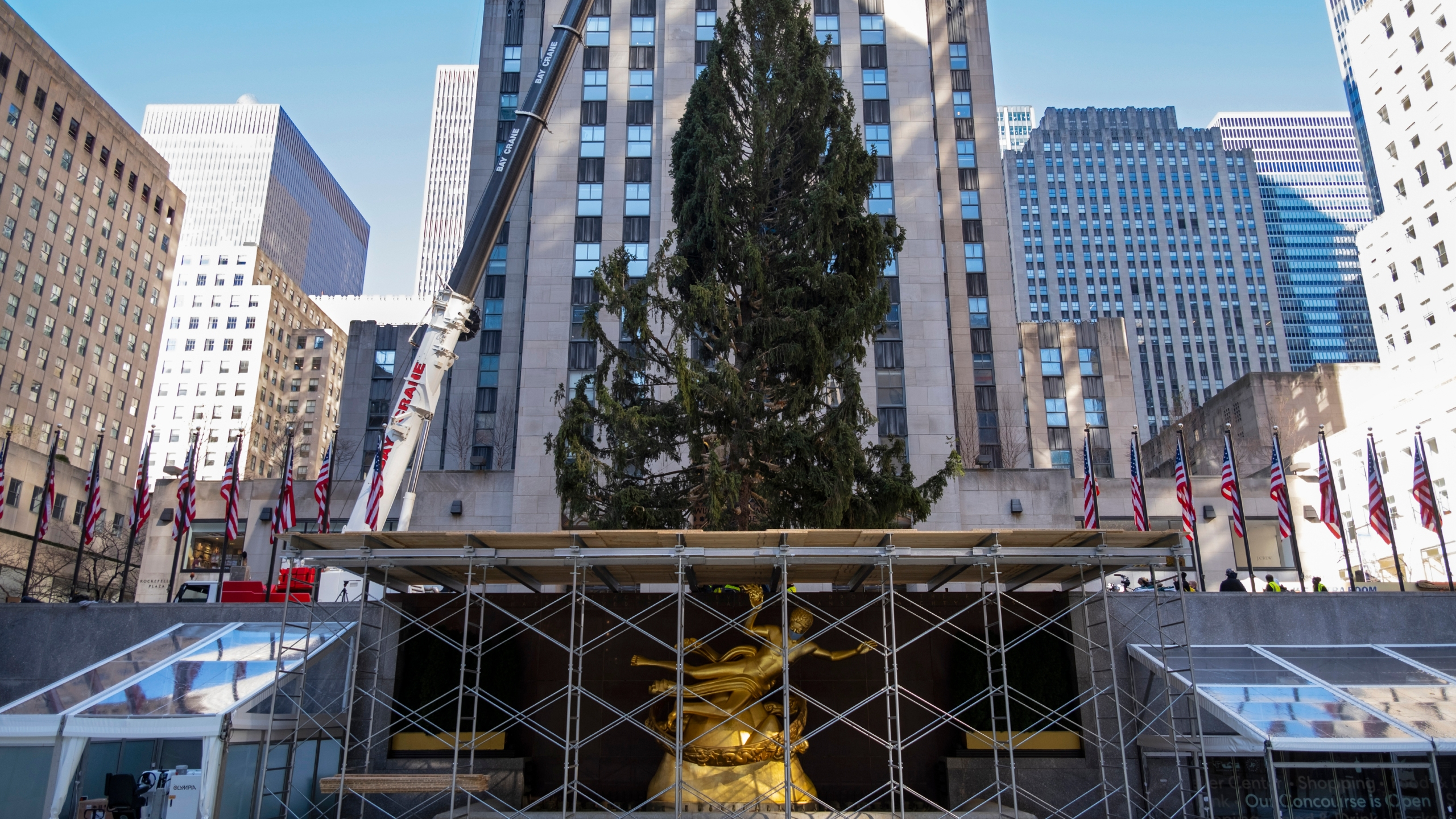 2020 Christmas Tree Lighting Iowa Rockefeller Center Christmas tree goes up; lighting Dec. 2
